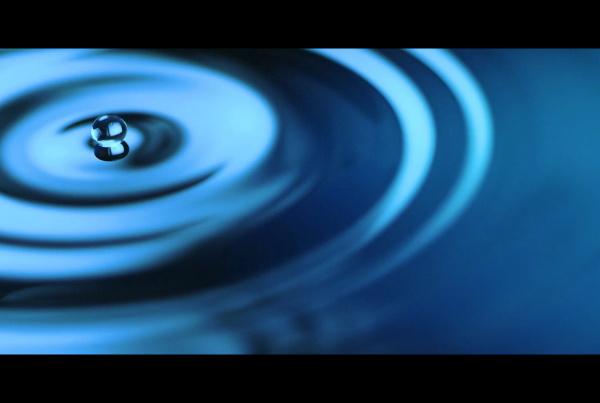 KNF_Rotationsverdampfer - Bluebox Tonstudios